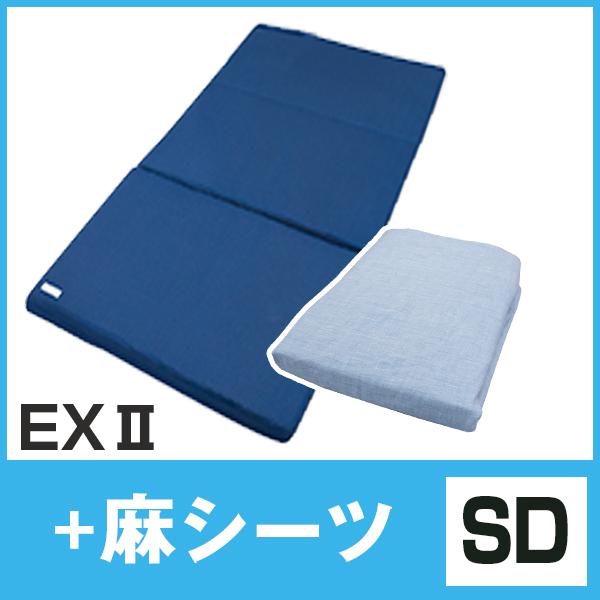EX+麻SD
