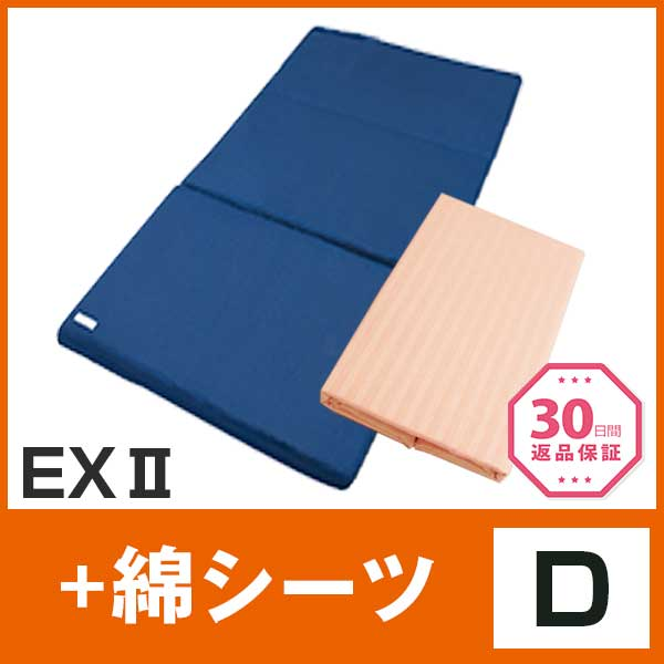 EX+綿D